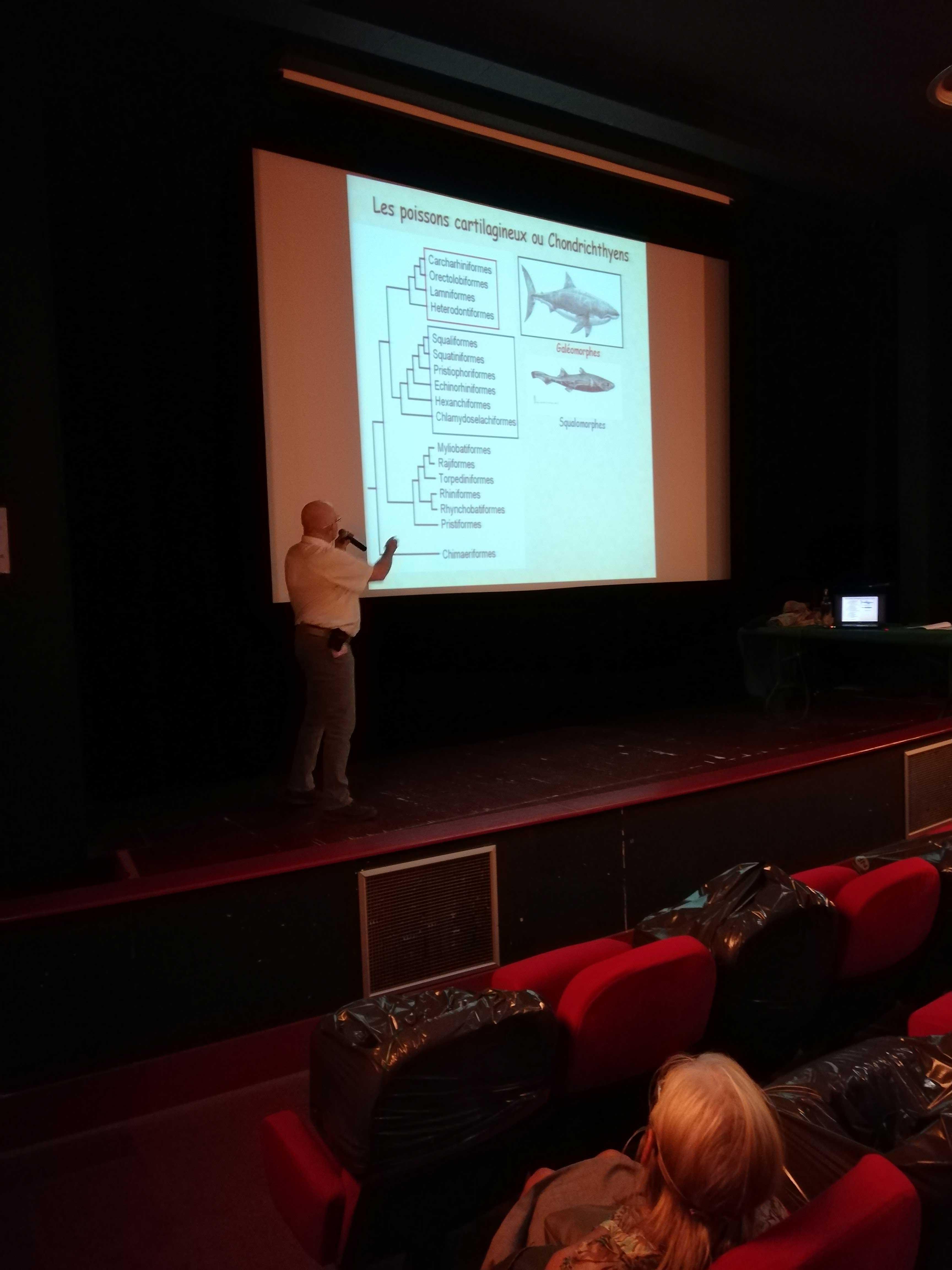 Conférence L'évolution incomprise des requins de Gilles Cuny