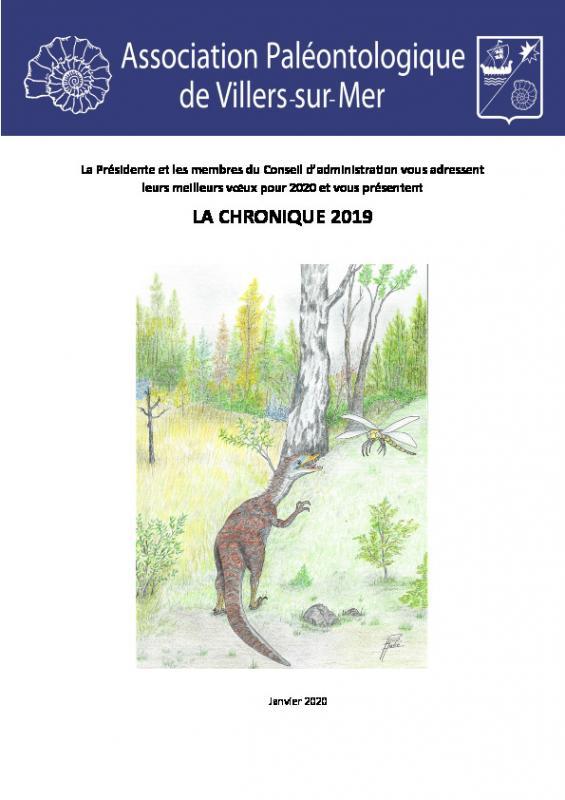 Chronique 2019